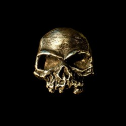 Brass Ring Skull ring Skull Jewelry HTJ04