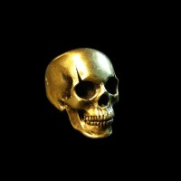 Scar skull ring mens brass rings HTJ65