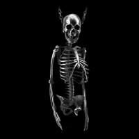 Skull necklace Handmade Silver Skull necklace SSN12