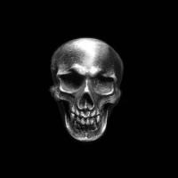 Dark Empire skull ring 925 silver rings SSJ147